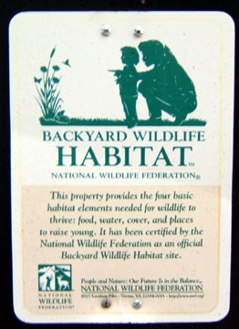 Backyard Wildlife Habitat